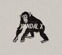 vandal x