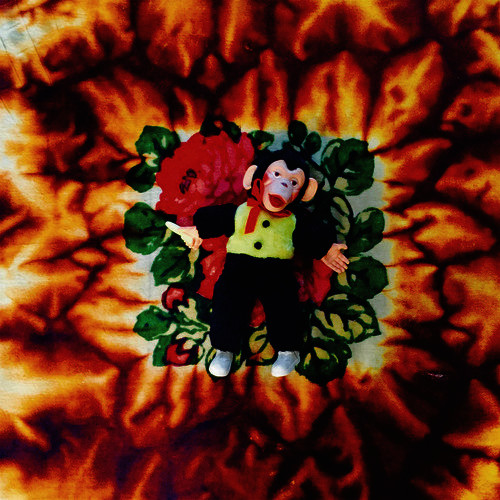 hodgy-fire